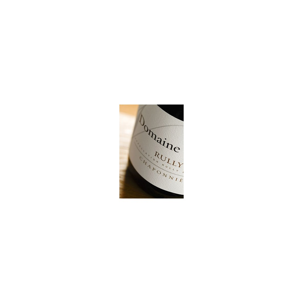 Rully wine white burgundy