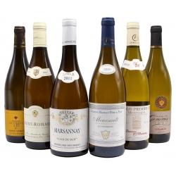 assortiment witte bourgogne wijn
