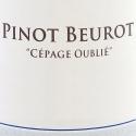 Pinot Beurot