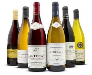 Sortiment Wein-Entdeckung Burgund