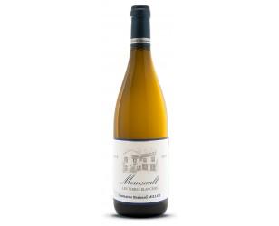 meursault vin