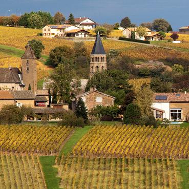 vente de vins du maconnais